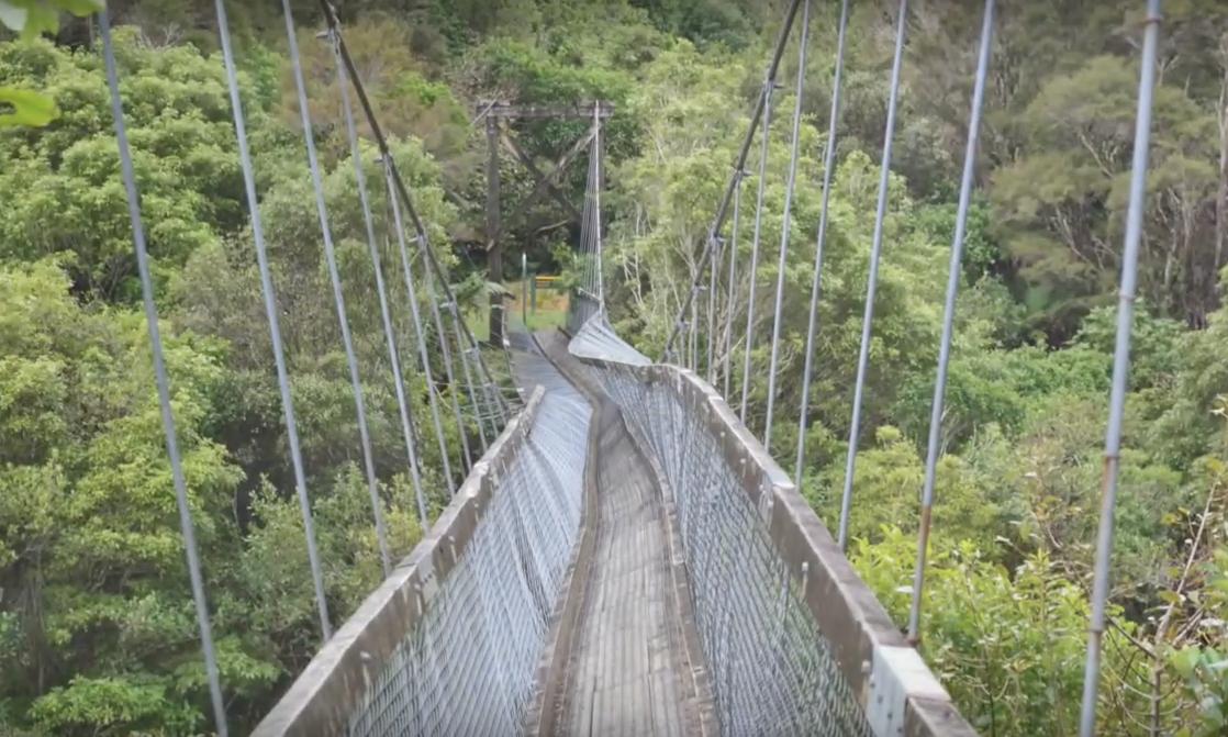 【九死に一生】ニュージーランドの吊橋が崩壊して3人が落下。【海外衝撃動画】.png