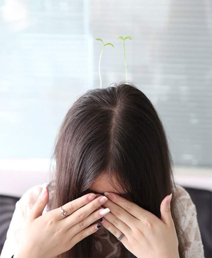 Sprout-Hair-Pins7__700.jpg