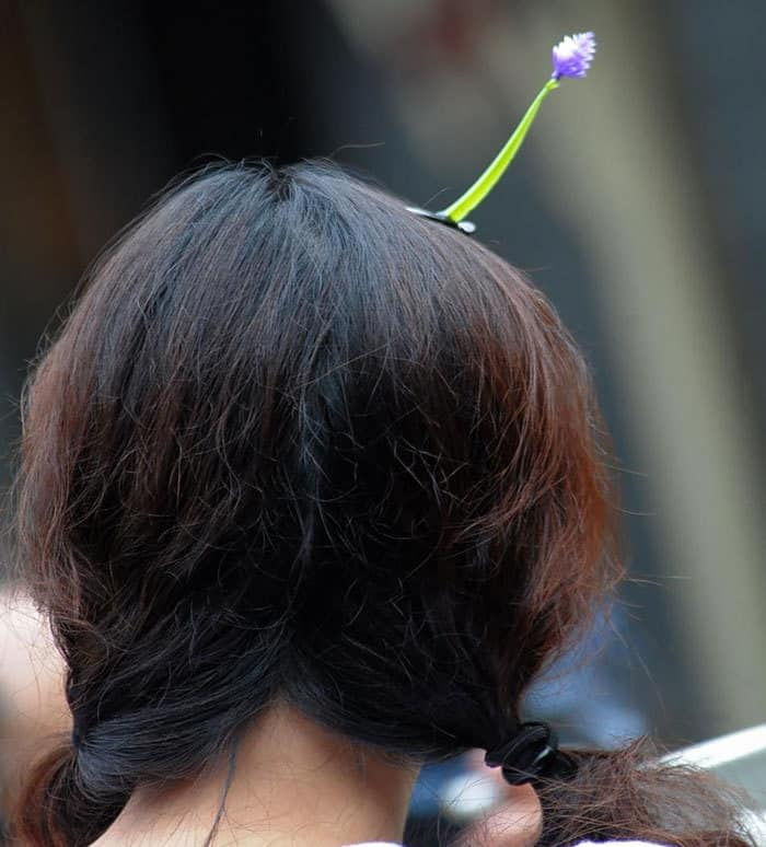 sprout-hairpins-china-trend-11__700.jpg