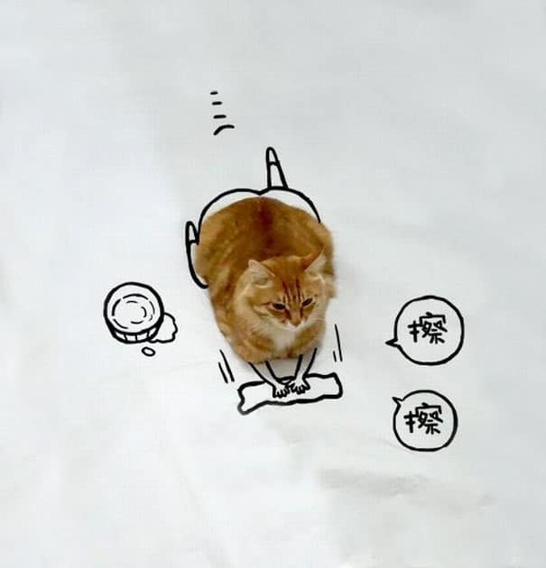 Too-Crazy-The-new-portrait-of-lovely-Cat-through-creative-drawing-of-young-people2__605