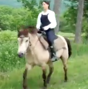 広瀬すず 初挑戦の乗馬動画が天才的でワロタwww